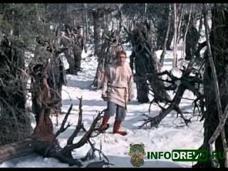 Сказка «Морозко» – новогодняя история, любима многими ещё из далёкого детст ...