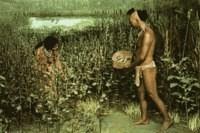 Для тех, кто еще думает, что наши предки всегда питались мясом.