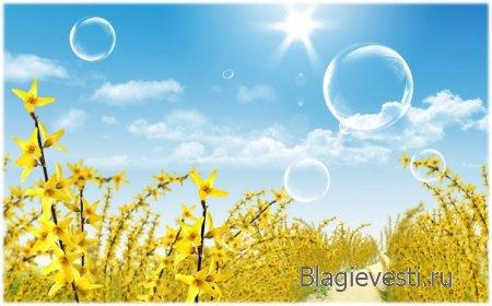 Поймите простую вещь: любая боль, которая дана Вам судьбой, - это залог будущего счастья.