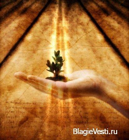 Семена Мудрости