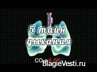 Растяжки на ПравИле. Москва-Зеленоград.