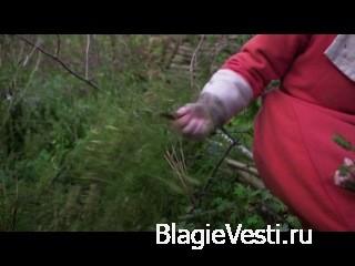 Быт средневековья - Ферма времён Тюдоров. BBC